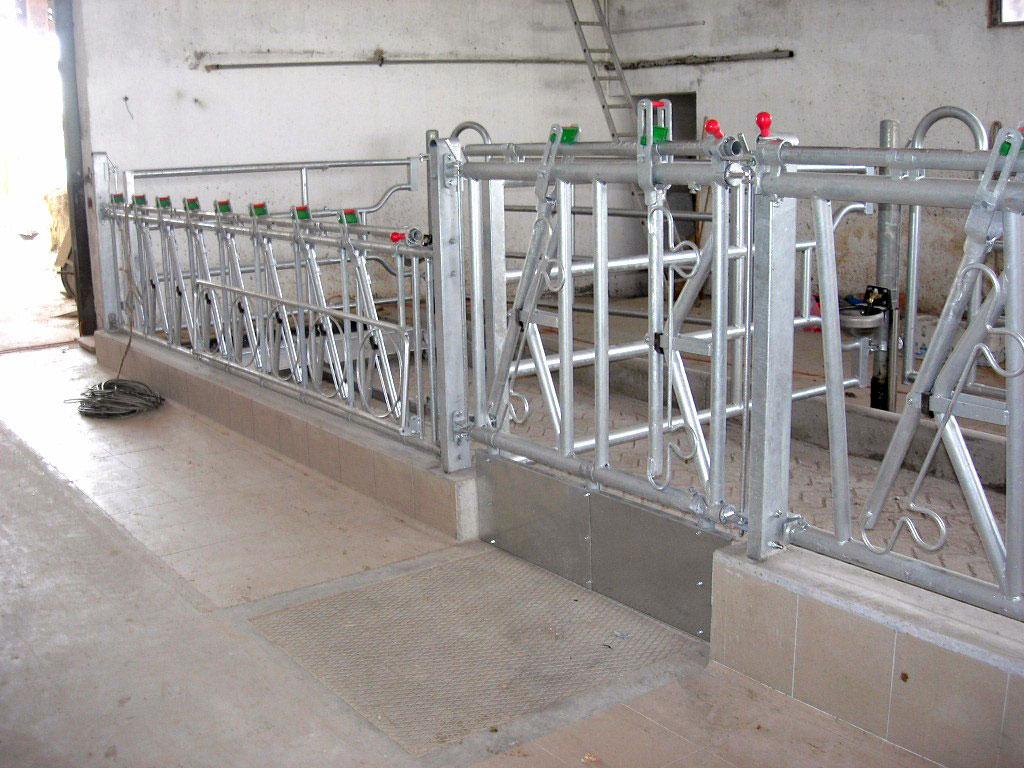 Rastrelliere autocatturanti autocatture per bovini for Attrezzature zootecniche usate